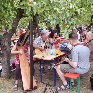 Obsthof am Steinberg - Musikprogramm Bembellinies