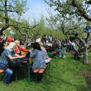 Obsthof am Steinberg - Apfelgarten mit Gästen