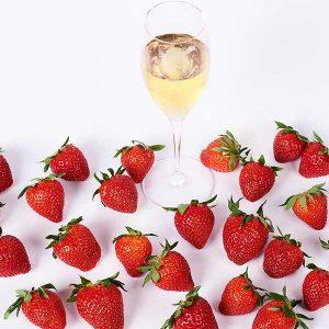 Obsthof am Steinberg - Champagner-Erdbeerverkostung